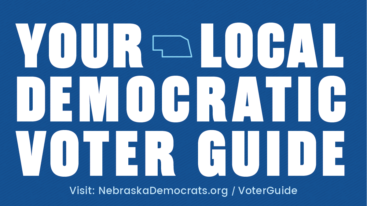 Local Dem Voter Guide